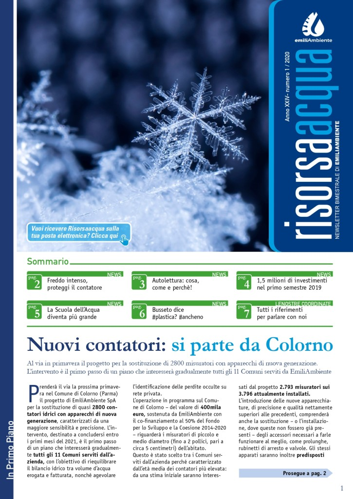 2020-1 Risorsaacqua WEB_pages-to-jpg-0001